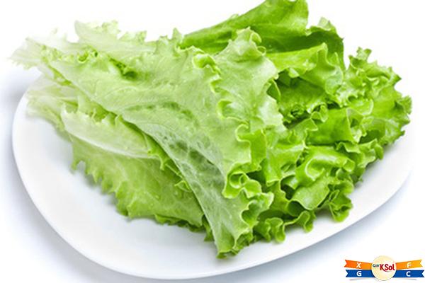 Dau diếp chứa chất flavonoid – hợp chất dinh dưỡng hàng đầu giúp chống oxy hóa và ngăn ngừa các phân tử đó gây hại cho tế bào