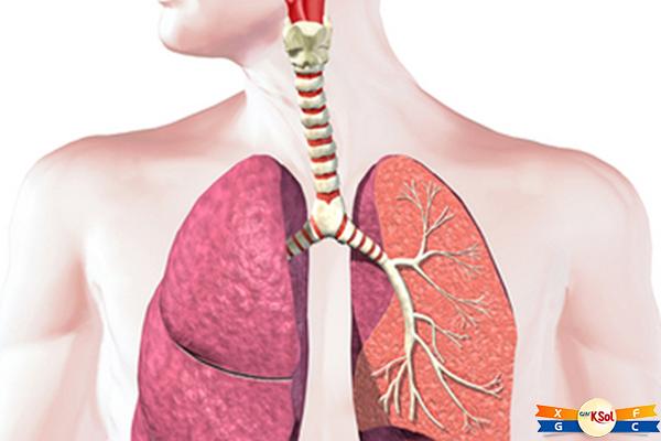 Bệnh ung thư phổi có lây không và lây qua con đường nào?