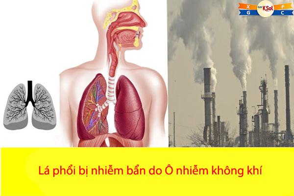 Tiếp xúc với không khí ô nhiễm lâu ngày có thể tích tụ nhiều chất độc hại