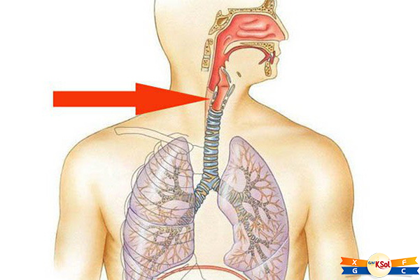 Dấu hiệu nhận biết ung thư thực quản di căn hạch