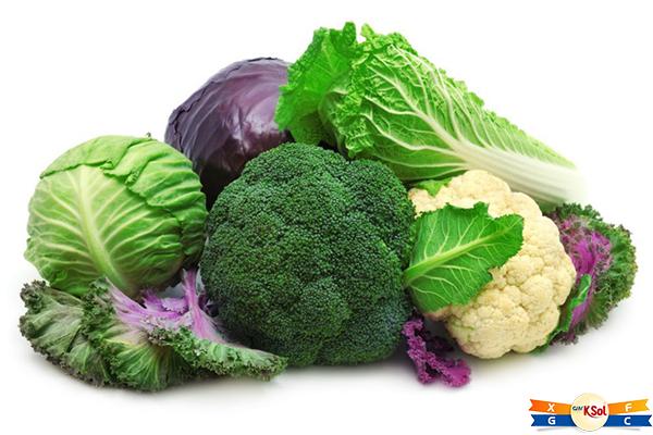 TOP thực phẩm có khả năng chống ung thư hàng đầu