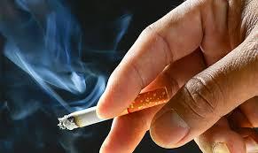 Hút thuốc và nhiễm khói thuốc là một trong những nguyên nhân chính gây ra ung thư phổi
