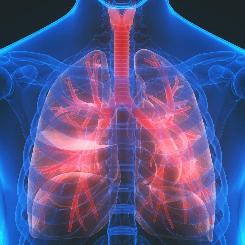 ung thư phổi là bệnh ung thư gây tử vong thứ 2 sau ung thư gan
