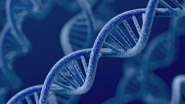 Đột biến gen BRCA1, BRCA2 có nguy cơ dẫn đến ung thư vú