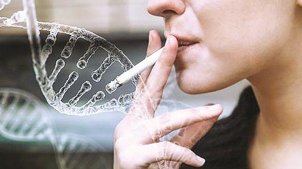 Hút thuốc lá là một nguyên nhân ung thư máu do làm biến đổi ADN tế bào