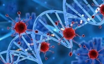 5 triệu chứng ung thư máu giai đoạn đầu và cách điều trị