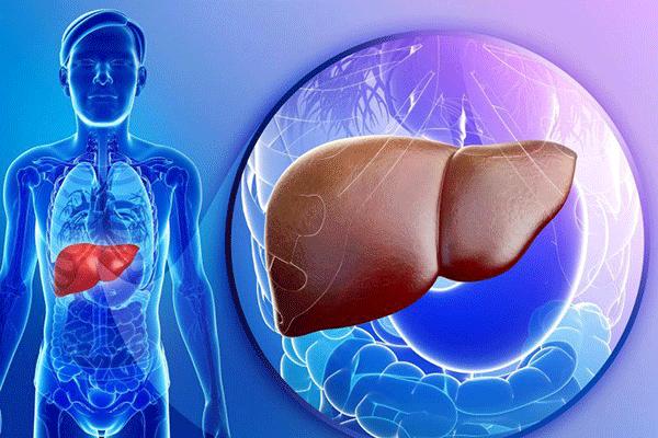 Ung thư gan là căn bệnh nguy hiểm chỉ đứng sau ung thư phổi