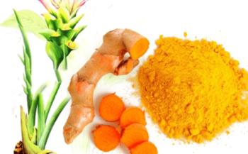 9 thực phẩm phòng chống ung thư vàng bạn không nên bỏ qua