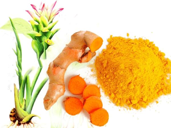 Nghệ với hàm lượng Curcumin là thực phẩm giúp phòng chống các bệnh ung thư đường tiêu hóa