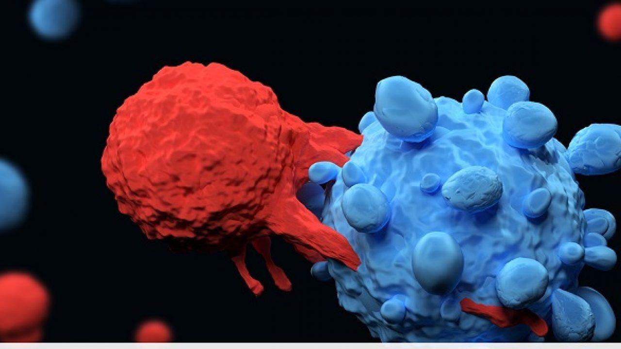 Liệu pháp nhắm mục tiêu là một loại điều trị sử dụng thuốc hoặc các chất khác để tấn công các tế bào ung thư cụ thể