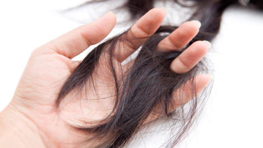 Rụng tóc là một trong những tác dụng phụ hóa trị liệu ung thư dạ dày thường gặp