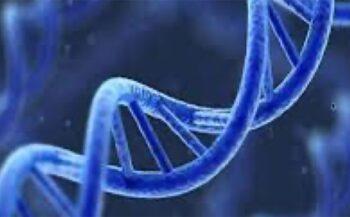 Ung thư máu có di truyền không? – Nguyên nhân và cách phòng ngừa