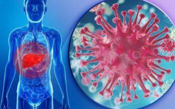 Giải đáp thắc mắc bệnh ung thư gan có lây không?