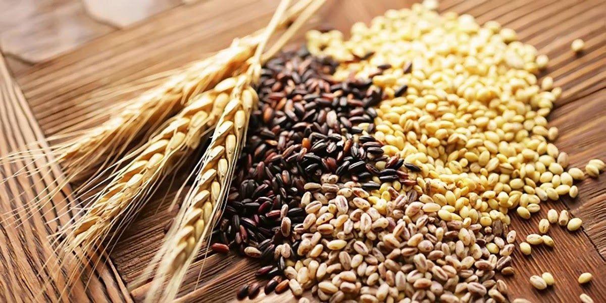 Trong chế độ ăn cho người ung thư phổi nên tăng cường ngũ cốc nguyên hạt