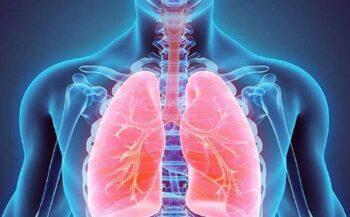 Ung thư phế quản: Nguyên nhân, dấu hiệu và cách điều trị